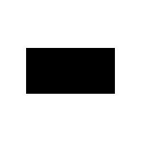 Paviè logo